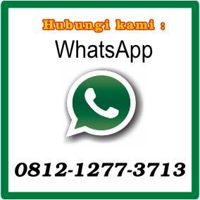 WhatsApp Fast Response